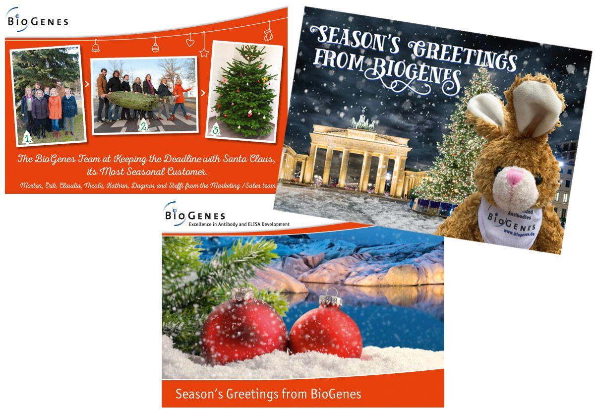 BioGenes Marketingkommunikation Weihnachtsaktionen